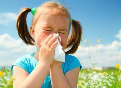 1-allergies-saisonnieres  Réchauffement de la Planète va Empirer vos Allergies selon les Spécialistes 1 allergies saisonnieres
